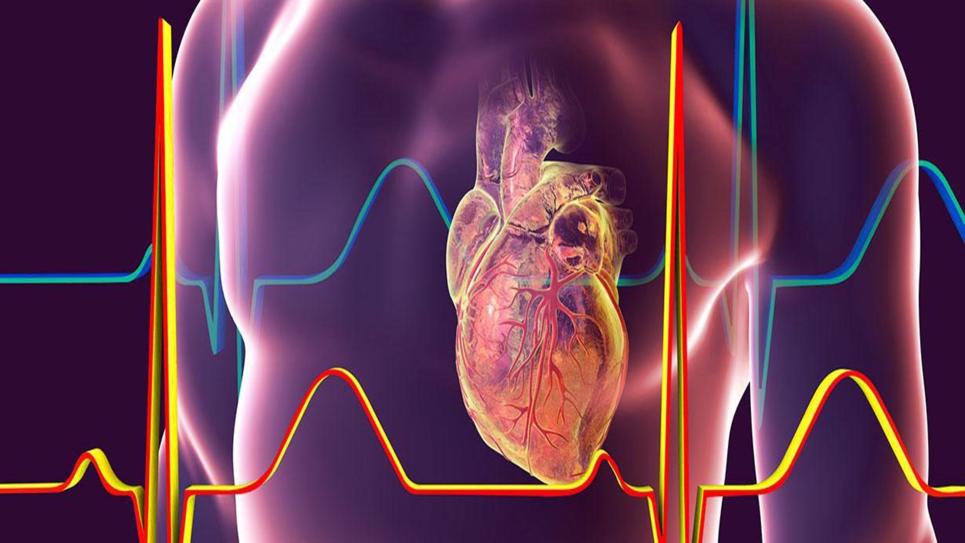 Holter Πιέσεως